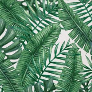 aquarel tropical